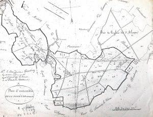 Plan d'ensemble de la forêt de Cinglais en 1825 On peut remarquer que la partie sud de Saint Laurent est encore fermée par la forêt.